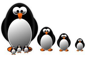 eolucio-algotirtme-penguin-de-google